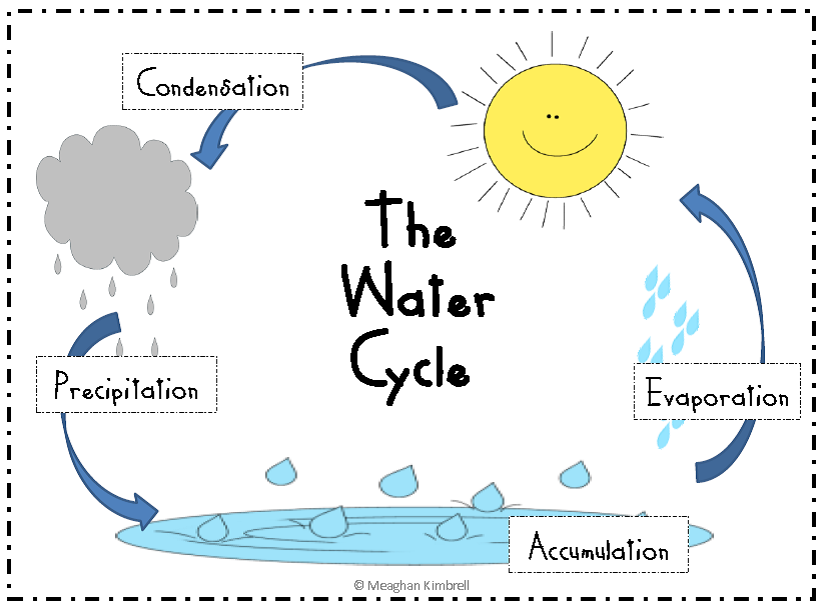 simple water diagram choice image