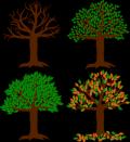 Seasons-of-the-year